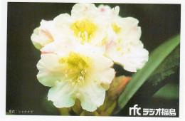 ラジオ福島(RFC)